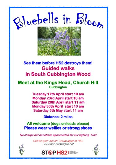 Poster for Bluebell Walks