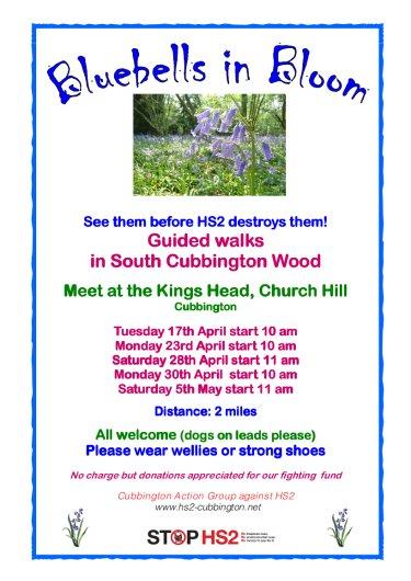 Poster for Bluebell Walks