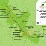 HS2 phase 1: 33 ancient woods condemned?