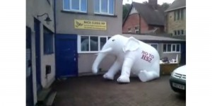 No to HS2 Elephant outside Nick Clegg's office
