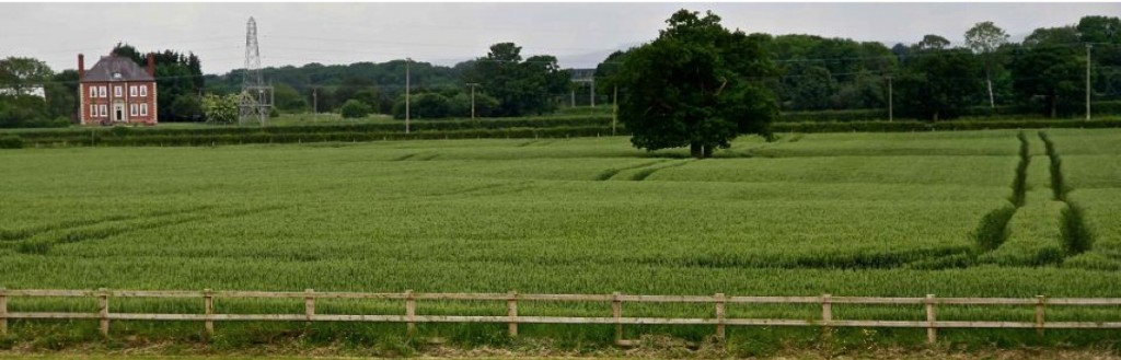 Between Winsford and Middlewich the HS2 proposed route is located along the centre line of 4 active linear subsidence hollows over brine runs from left to right in in above image. Photo C Triffit July 2014