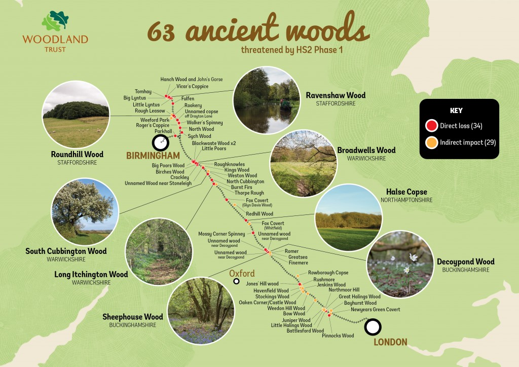 63 Ancient Woods threatened by HS2 Phase 1