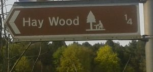Yes, we know it's spelled 'Heywood', but given the title of the article, we couldn't not use this picture!