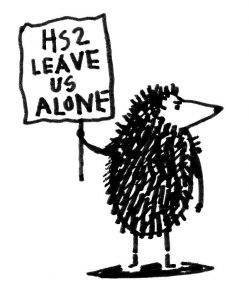 Hedgehogs against HS2 cartoon